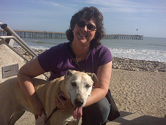 Sue and Goldie at the beach